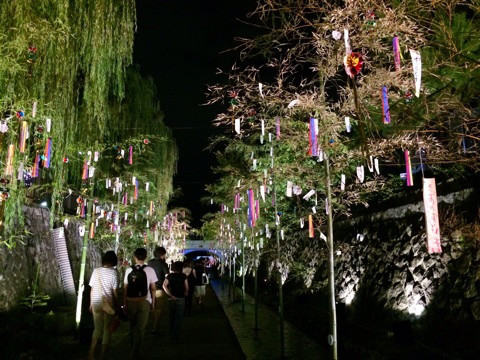 kyono-tanabata4