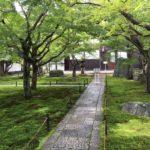 10月14日(日)大徳寺曝涼展、真珠庵、相国寺特別拝観のお宝を見る旅