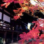 2017年11月21日(火)錦秋の京都 真如堂の紅葉と和と仏が融合した空間でフランス料理を愉しむ旅