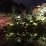 3月10日(土)聞香体験と花灯路 古都京都の旅