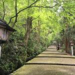 会員様限定 11月17日(土)出発  金沢・白山比咩神社1泊2日の旅・日帰りも可