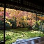 【ご案内】11月15日(木)25日(日)27日(火)京都癒しの旅にお任せの旅